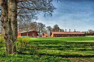 cloppenburg-138902_640