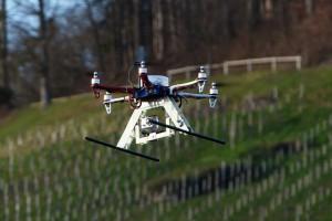 Drohne-Weinberg_640